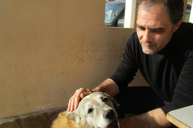 Куче Марто в селото го мислят за полувълк.