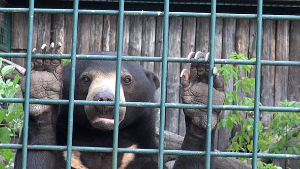 pm-berliner-zoo