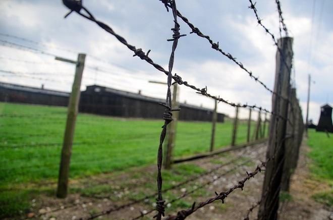 fence-444416_960_720