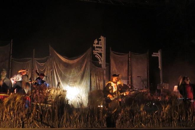 Винисио Капосела на сцена