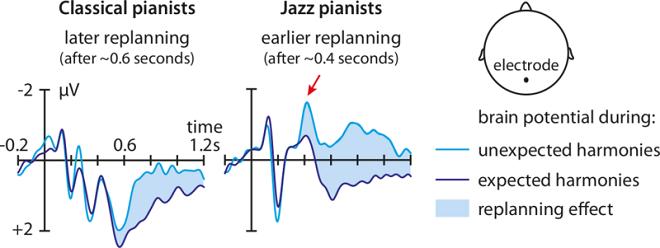"""Разликата в мозъчните потенциали, очакваните и неочакваните хармонии и ефектът на ре-планирането (изт.""""Макс-Планк"""" и-т)"""